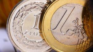 Złoty umocnił się wobec euro