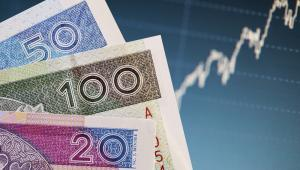 Złoty złotówka polska waluta notowania