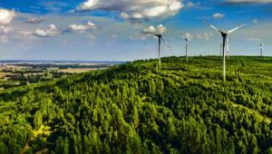 Sytuacja bardziej się skomplikuje, jeśli TSUE dojdzie do wniosku, że ustawa wiatrakowa jest niezgodna z prawem unijnym, a konkretnie dyrektywą o promowaniu energii z odnawialnych źródeł (2009/28)