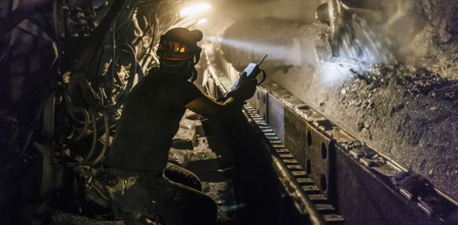 Wsparcia logistycznego udzieliło wiele instytucji; do poszukiwań wykorzystano m.in. psy policji i straży pożarnej, przygotowane do pracy w wodzie, gruzowiskach oraz zawałach.