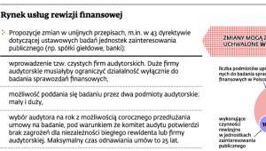 Rynek usług rewizji finansowej