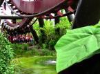 Thorpe Park –  położony w okolicy Londynu jest jednym z największych parków brytyjskich parków rozrywki. Wybudowany w 1979 roku oferuje dziś mnóstwo różnych atrakcji, w tym aż siedem ekstremalnych roller coasterów. Wstęp do parku kosztuje około 220 złotych, dla dzieci do 12. Roku życia cena jest około 50 złotych niższa.