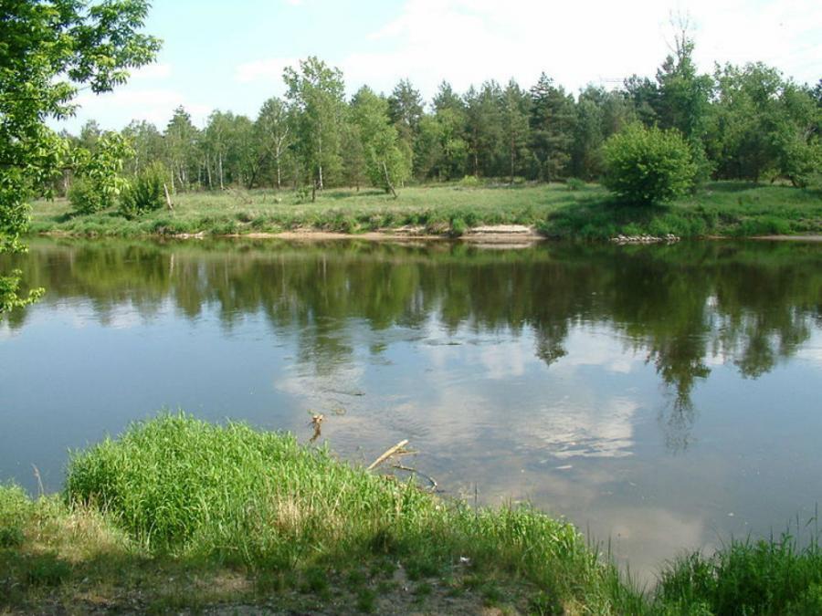 Wielkopolski Park Narodowy, fot. by Radomil / Wikimedia Commons