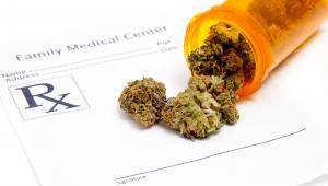 W Polsce nie ma wytycznych, jak stosować np. leki na bazie CBD