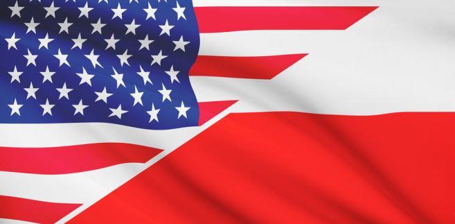 Szef Ludowców podkreślił, że PSL opowiada się za wzmocnieniem obronności Polski w sojuszu z USA.