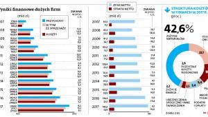 Wyniki finansowe dużych firm