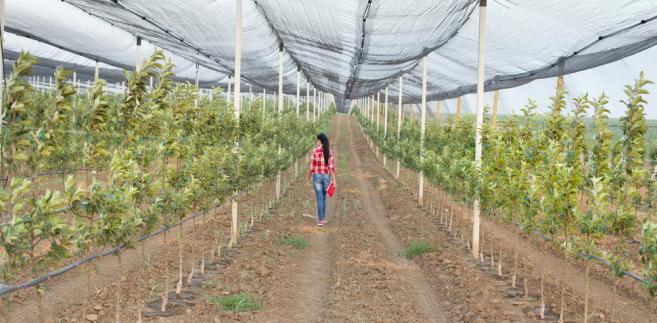 Urząd spodziewa się większej liczby skarg od małych przedsiębiorców działających na rynku rolno-spożywczym.