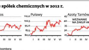 Akcje spółek chemicznych w 2012 r.